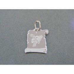 Zlatý prívesok platnička znamenie vodnár biele zlato DI050B/2